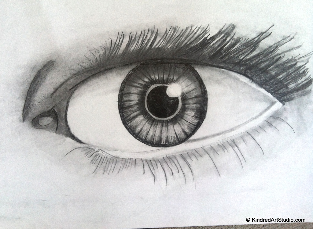 Drawn by a 12 Year Old.